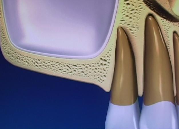 bethesda dentist